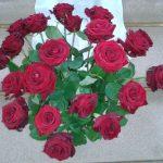 Rosen zur Kreuzverehrung